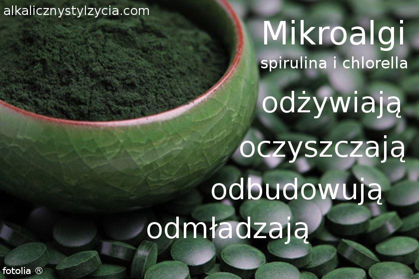 spirulina, chlorella (mikroalgi) odżywiają, oczyszczają, odbudowują, odmładzają organizm